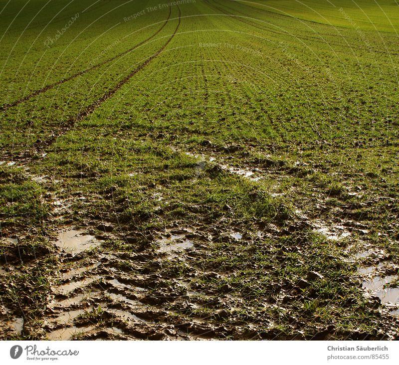 Follow the green 1 grün Wolken Wiese Gras Landschaft Luft Feld Rasen Weide Ackerbau Paradies Planet Auftrag Grünfläche