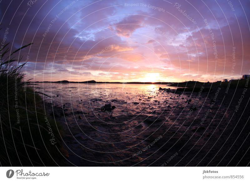 ISLAND / Borgarnes III Umwelt Natur Landschaft Pflanze schön Einsamkeit Erholung Ferien & Urlaub & Reisen Ferne Freizeit & Hobby Horizont Schönes Wetter