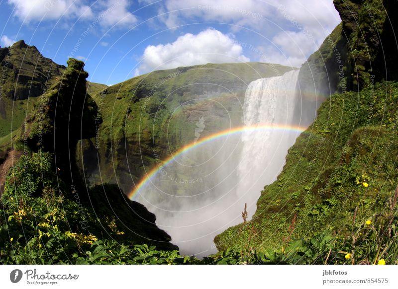 Skógarfoss Natur Pflanze Wasser Sommer Blume Landschaft Umwelt Berge u. Gebirge Felsen Energie wandern Wassertropfen Schönes Wetter Urelemente Abenteuer Fluss
