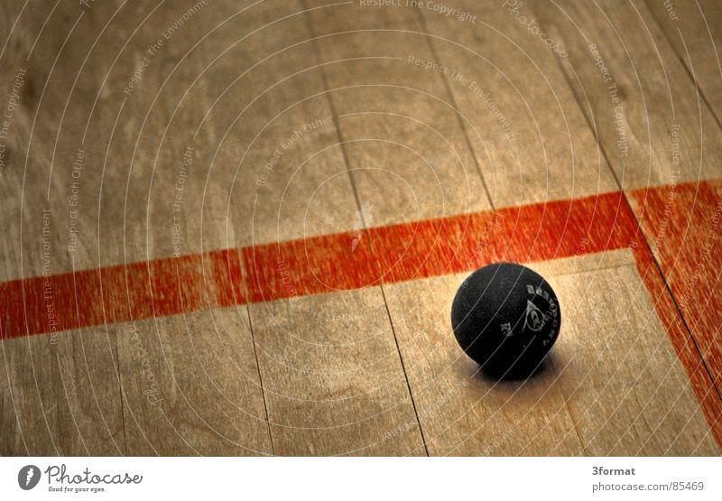verloren02 Satzball Squash Spielen Ballsport Sporthalle Parkett Holz geschlagen ruhend gepunktet Spielfeld bewegungslos danach squashball kurzer Satz springen