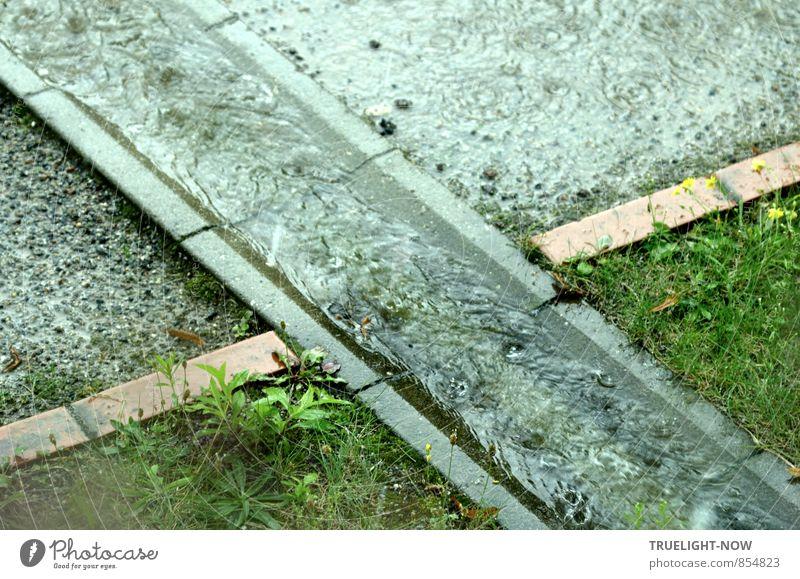 Regen - kreuz und quer. Umwelt Natur Erde Wasser Wassertropfen schlechtes Wetter Gras Wiese Stadt Stadtrand Menschenleer Gebäude Architektur Wohnanlage