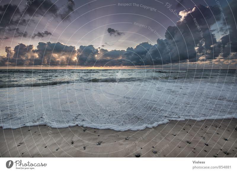 adventure Ausflug Abenteuer Ferne Freiheit Expedition Sommer Sonne Strand Meer Insel Wellen Umwelt Natur Landschaft Urelemente Himmel Wolken Sonnenaufgang