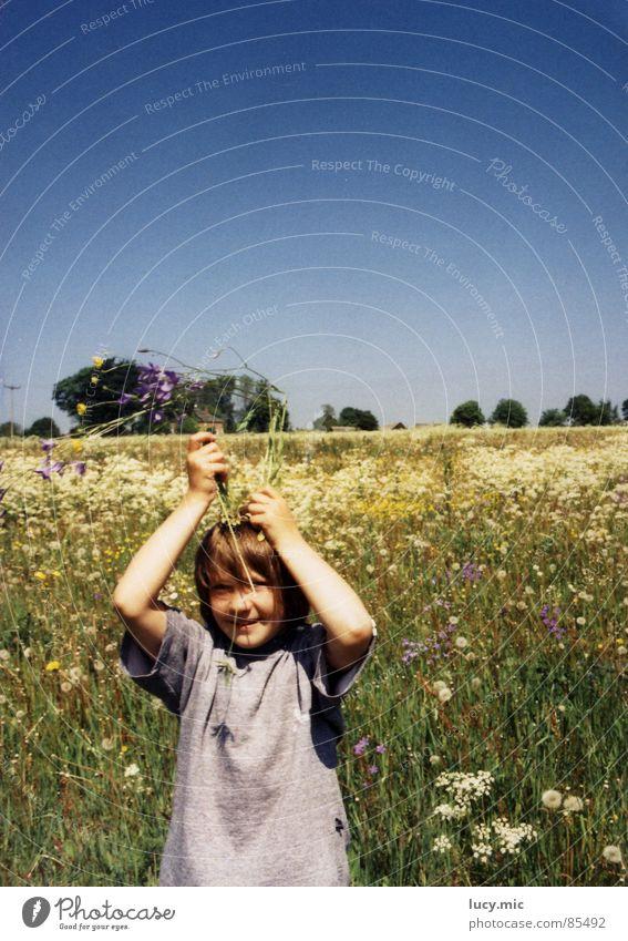 summerbrezze Kind Blume Sommer Freude Wiese Frieden Blumenwiese