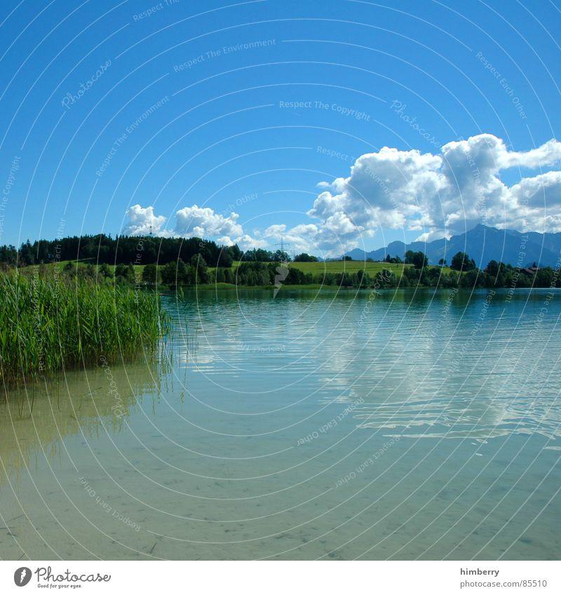 riviera royal V Natur Himmel grün Pflanze Sommer Wolken Wiese Gras Berge u. Gebirge Landschaft Umwelt Wildnis Grünfläche Firmament Naturgesetz