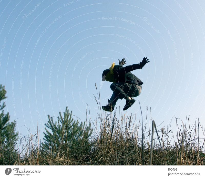 grau™ fliegt im sonntagsanzug Natur Himmel Pflanze Freude gelb springen Business Umwelt fliegen Geschwindigkeit Luftverkehr Maske Anzug Halm Karnevalskostüm