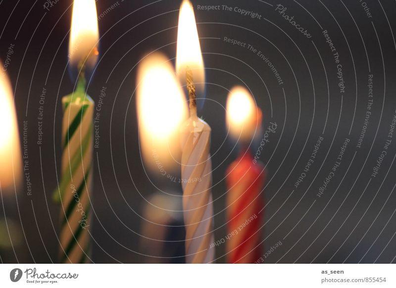 Kerzenschein Kind grün Farbe rot ruhig Wärme Glück Feste & Feiern Stimmung Party Zufriedenheit Häusliches Leben leuchten Dekoration & Verzierung Geburtstag ästhetisch