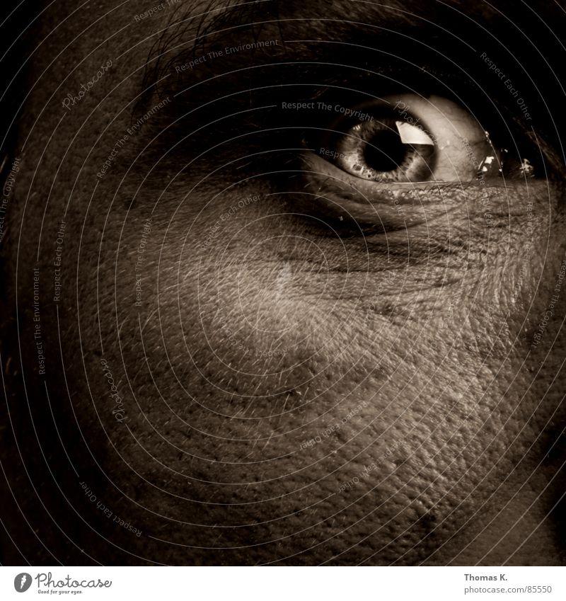 Augenblick Mann Auge Haut Nase verrückt Klarheit fantastisch deutlich bizarr Momentaufnahme Gesichtsausdruck Interesse Freak Begeisterung Aussehen Seele