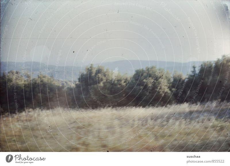 längst vergangener augenblick Himmel Natur Pflanze Sommer Landschaft Umwelt Berge u. Gebirge Luft Sträucher Vergangenheit Nostalgie Dia