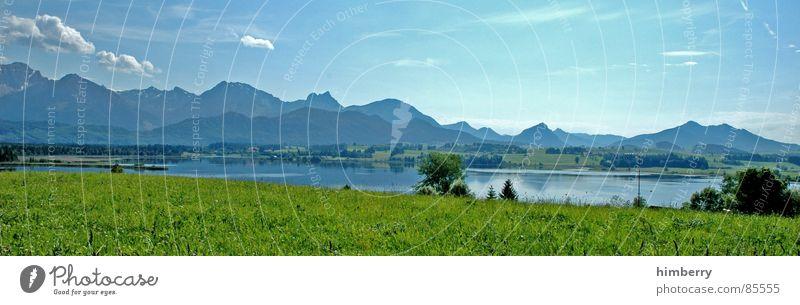 riviera royal VII Gras Sommer Naturgesetz Wiese grün Umwelt Wolken Wildnis Himmel Grünfläche Berge u. Gebirge Landschaft Pflanze Firmament