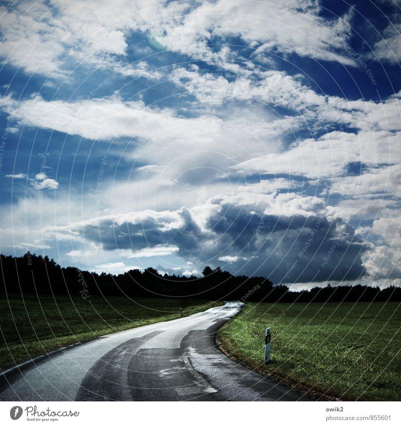 Geradewegs Ausflug Ferne Freiheit Umwelt Natur Landschaft Luft Himmel Wolken Horizont Klima Wetter Schönes Wetter Pflanze Gras Wiese Wald Königshainer Berge