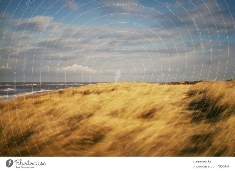 lieblingsplatz Himmel Meer Strand Gras Landschaft Küste Rasen Sturm Stranddüne Dänemark