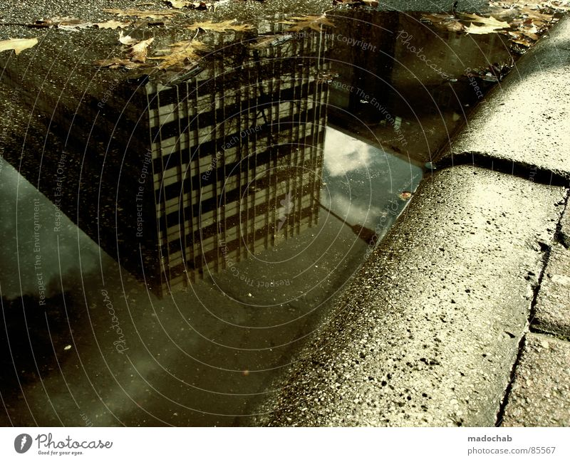 WAKE UP! Pfütze wirklich Nebel nass Herbst Haus Hochhaus Gebäude Material Fenster live Block Beton Etage trist dunkel Leidenschaft Spiegel Vermieter Mieter