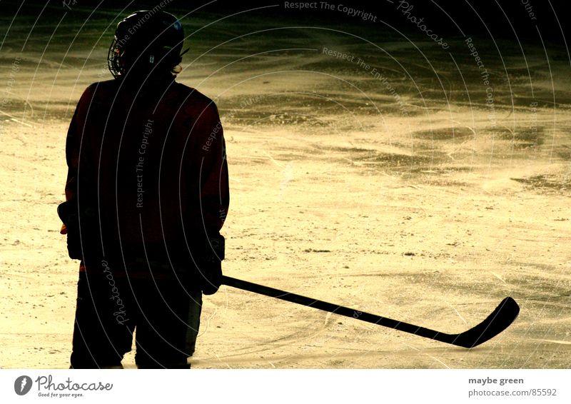 Einsamer Schütze Schlittschuhe Gegner schwarz Eishockey Gegenlicht Eisstadion Einsamkeit Helm Schutzbekleidung Sport Spielen Winter Wintersport maybe green gold