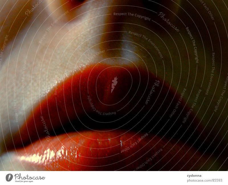 Roter Mund Mensch Frau rot Haut Mund Nase Lippen Küssen Kosmetik trendy Sinnesorgane Lippenstift Öffnung Oberlippe Seitenlicht Unterlippe