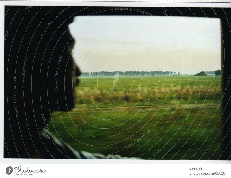 Ventanilla Konzentration amanecer plantación Cordoba contraluz verde ventana viaje train