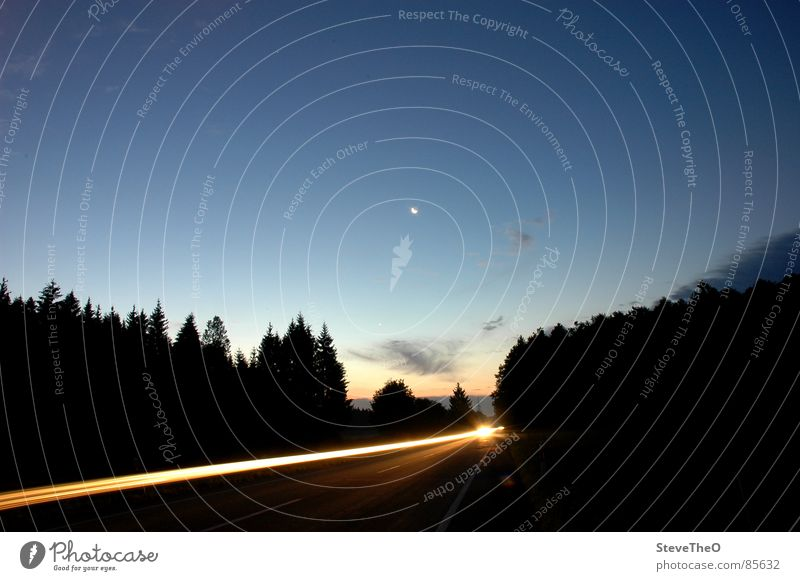 Lichtstrahl am Morgen Himmel Straße Wald Horizont Mond