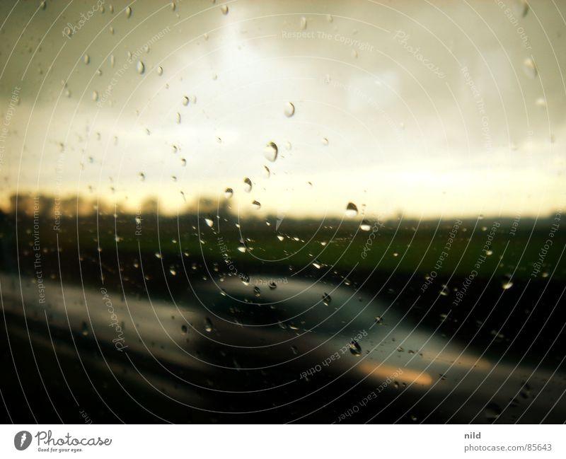 Die Bahn auf der Überholspur Himmel Regen nass Horizont Verkehr Geschwindigkeit fahren Rasen bedrohlich Verschiedenheit schlechtes Wetter geradeaus
