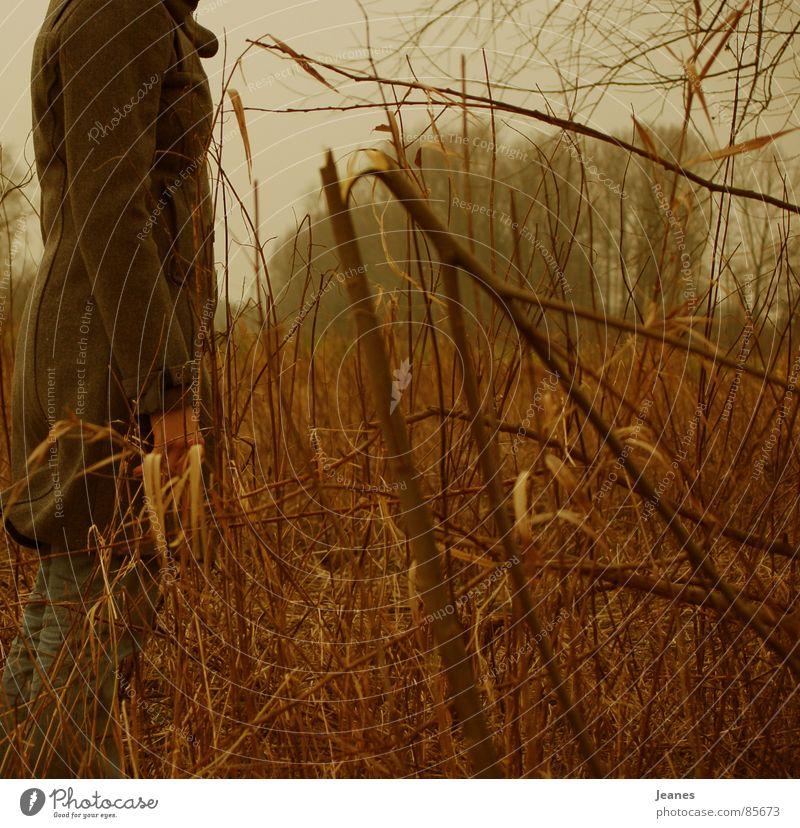 Wen sucht sie? Frau rot Einsamkeit gelb Ferne Farbe Wald Herbst Freiheit Luft braun Feld blond Wind Suche leer