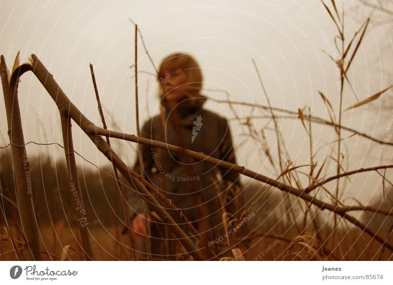 Wen sucht sie, die Zweite Frau rot Einsamkeit gelb Ferne Farbe Wald Herbst Freiheit Luft braun Feld blond Wind Suche leer