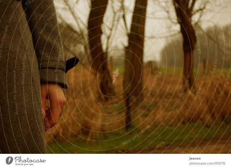 Wen wird sie finden? Frau rot Einsamkeit gelb Ferne Farbe Wald Herbst Freiheit Luft braun Feld blond Wind Suche leer
