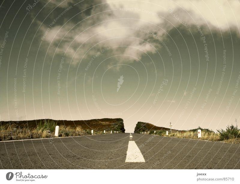 Division Asphalt aufschütten Straße Straßenverkehr Alm Bergwiese Wolken Sträucher Hügel Fernstraße Gras Grasland grün Landstraße Madeira Mittelstreifen