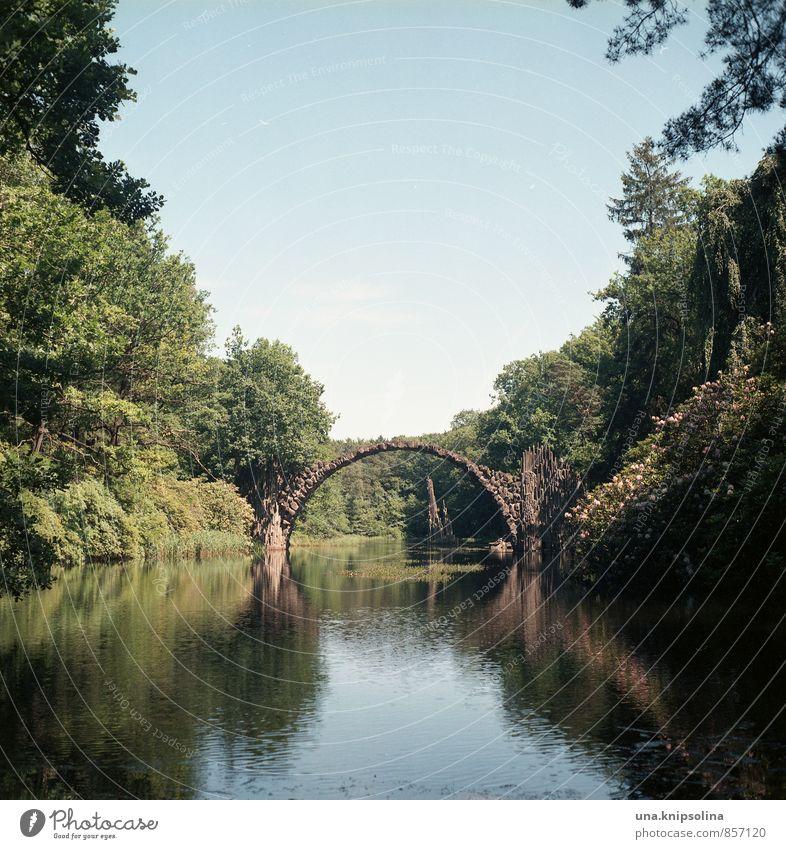 kromlau Umwelt Natur Landschaft Wolkenloser Himmel Sommer Schönes Wetter Park Wald See Fluss Kromlau Sachsen Brücke Stein natürlich rund Idylle einzigartig