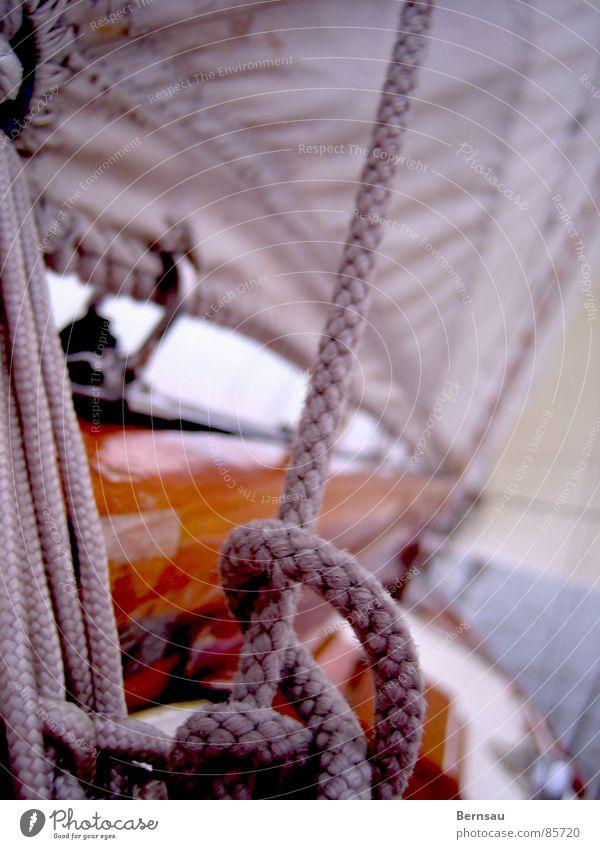 Segelschiff Wasser Meer Sommer Ferien & Urlaub & Reisen Einsamkeit kalt Freiheit Holz See Wärme Wasserfahrzeug Wellen Wind Seil Ausflug Freizeit & Hobby