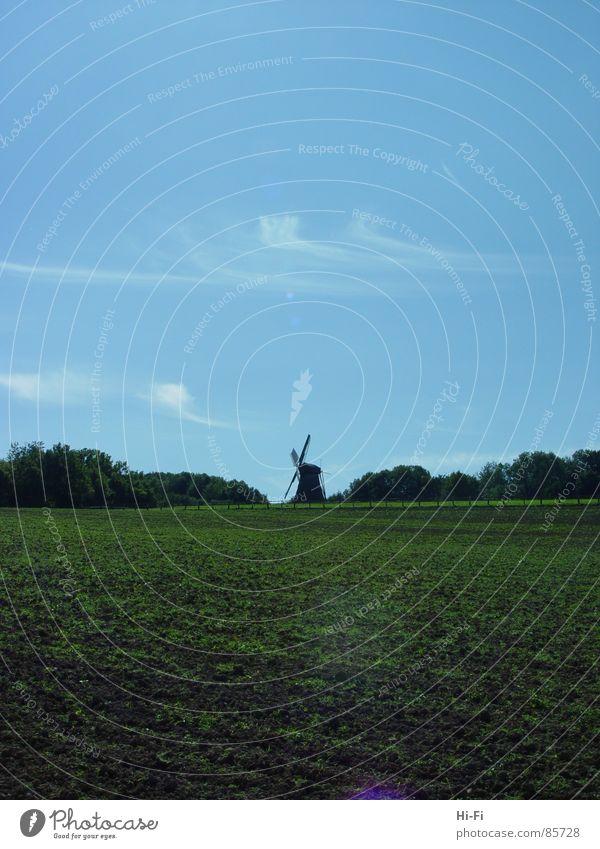 Mühle Landschaft Feld Dorf Getreide Landwirtschaft Bauernhof Handwerk Ackerbau Museum Weizen zerkleinern Ranch Altertum Feldarbeit Dorfwiese