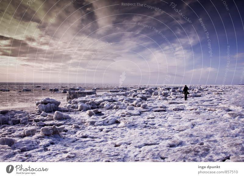 Schneestrand Umwelt Natur Urelemente Himmel Wolken Sonnenaufgang Sonnenuntergang Winter Klima Klimawandel Schönes Wetter Eis Frost Küste Nordsee Meer Insel