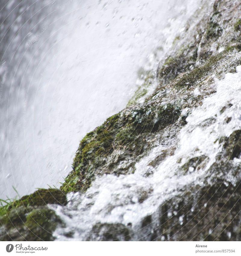von Klippe zu Klippe Umwelt Natur Landschaft Urelemente Wasser Wassertropfen Gras Felsen Alpen Berge u. Gebirge Wasserfall frisch gigantisch nass natürlich grau