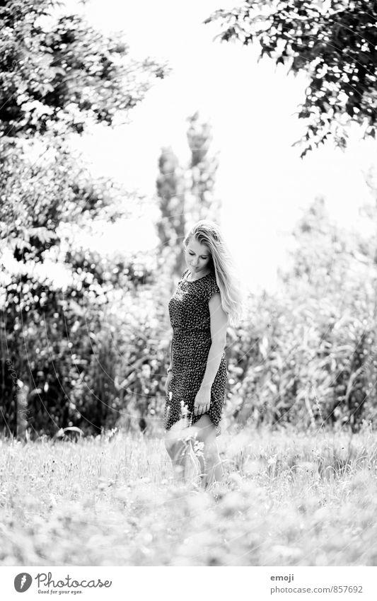 im Sommer Mensch Natur Jugendliche schön Sommer Junge Frau 18-30 Jahre Umwelt Erwachsene Wiese feminin natürlich Frühling Schönes Wetter