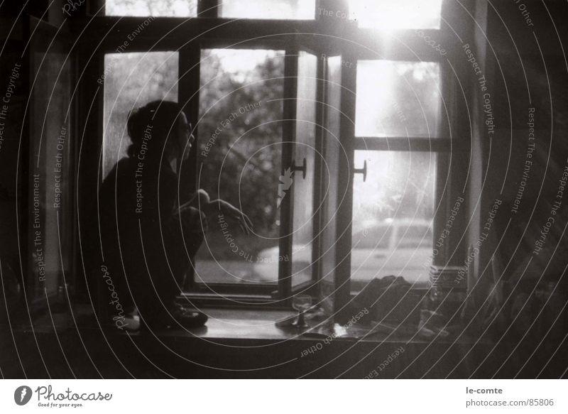 zora Fensterbrett Denken Sommer Sonnenstrahlen Sonnenbrille Vertrauen Schwarzweißfoto