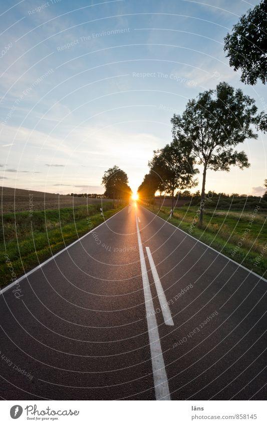 wegweisend Himmel Ferien & Urlaub & Reisen Sommer Sonne Ferne Straße Wege & Pfade Freiheit Linie Horizont leuchten Schilder & Markierungen Verkehr Beginn