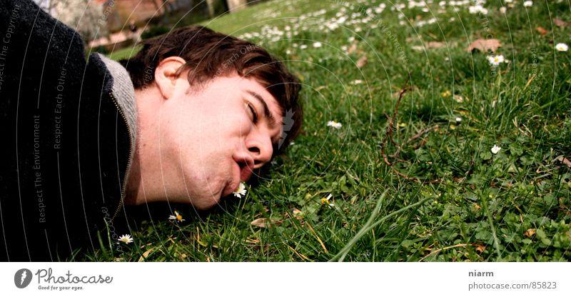 Blümchenfotografie 5 Natur grün schön Blume Wiese Gras Frühling Blüte Mund verrückt Streifen Schönes Wetter Rasen Kontakt Kitsch Weide