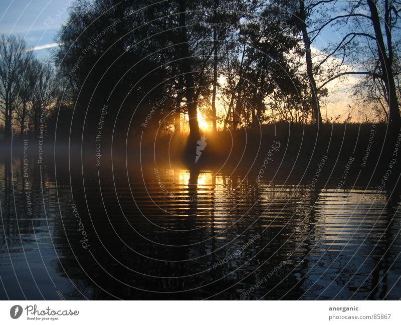 die_spree Wasser Ferien & Urlaub & Reisen Fluss Stillleben Bach Spree Kanu Wasserfahrzeug Kajak