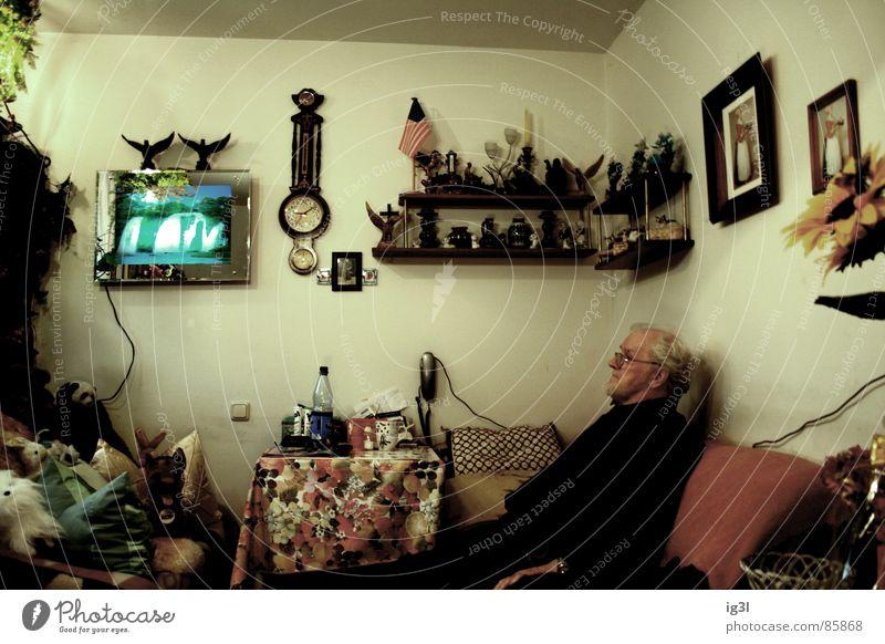 auslaufmodell? erinnern Krimskrams vollgestellt Oldtimer Partnerschaft Großvater Blume Müdigkeit ausgebrannt Leben Sofa Schmuck Erinnerung Gedanke Denken