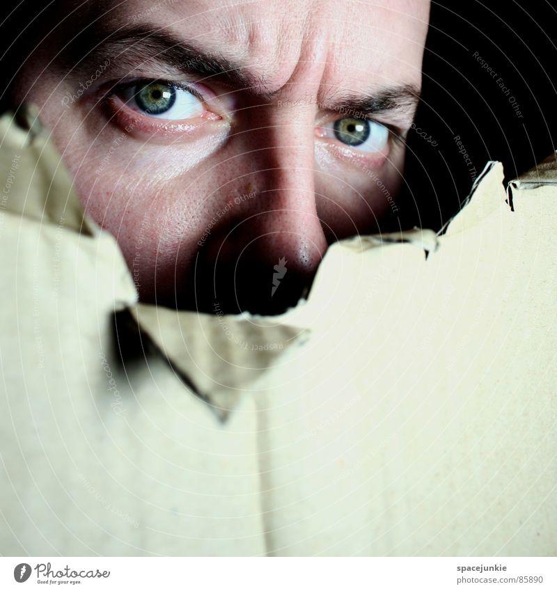 observation Blick Freude Gesicht Auge beobachten Spitze Kontrolle Agent Karton unerkannt Spitzel Versteck verfolgen überwachen fixieren Pappschachtel
