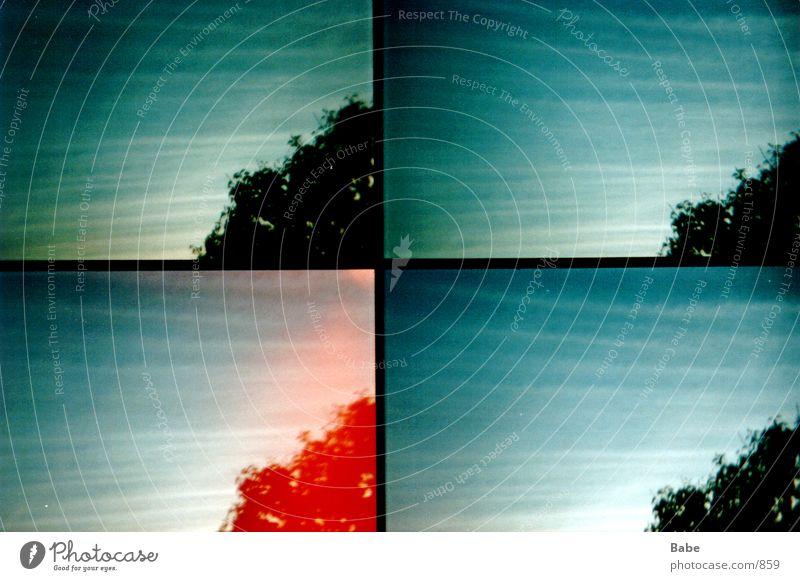aus dem Fenster 2 Wolken Baum Lomografie