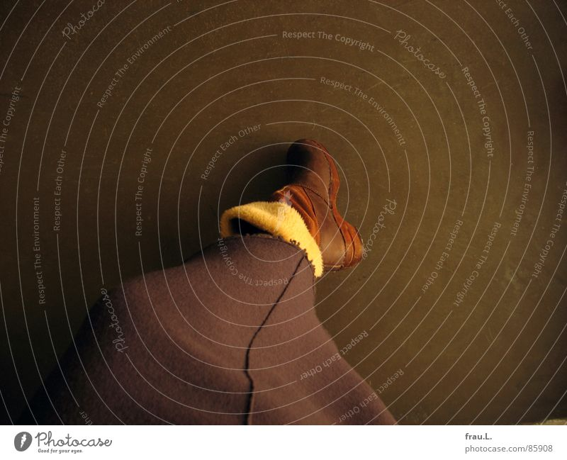 Stiefel Holzschuhe Leder braun Physik Wolle bequem unbequem Bekleidung Frau Freude Dänemark Kunstfell Holzsohle Fuß Wärme Franse Beine