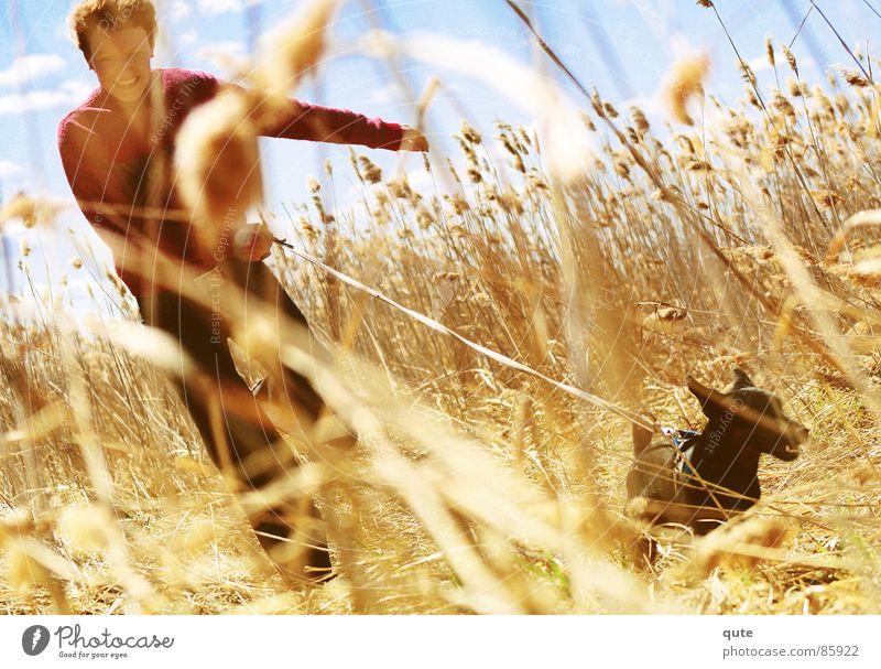 The chase Freude Feld Getreide Ähren Fräulein