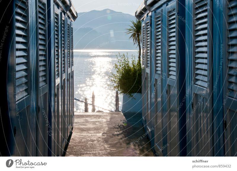 Badetag Ferien & Urlaub & Reisen blau Pflanze Sommer Sonne Meer Erholung ruhig Strand Berge u. Gebirge Küste Schwimmen & Baden glänzend Freizeit & Hobby Wellen
