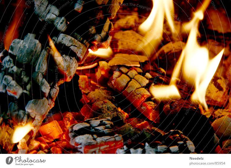 Fuego heiß Holz Wohlgefühl Physik gelb heizen brennen grillieren gluht Brand Flamme Wärme sehr warm