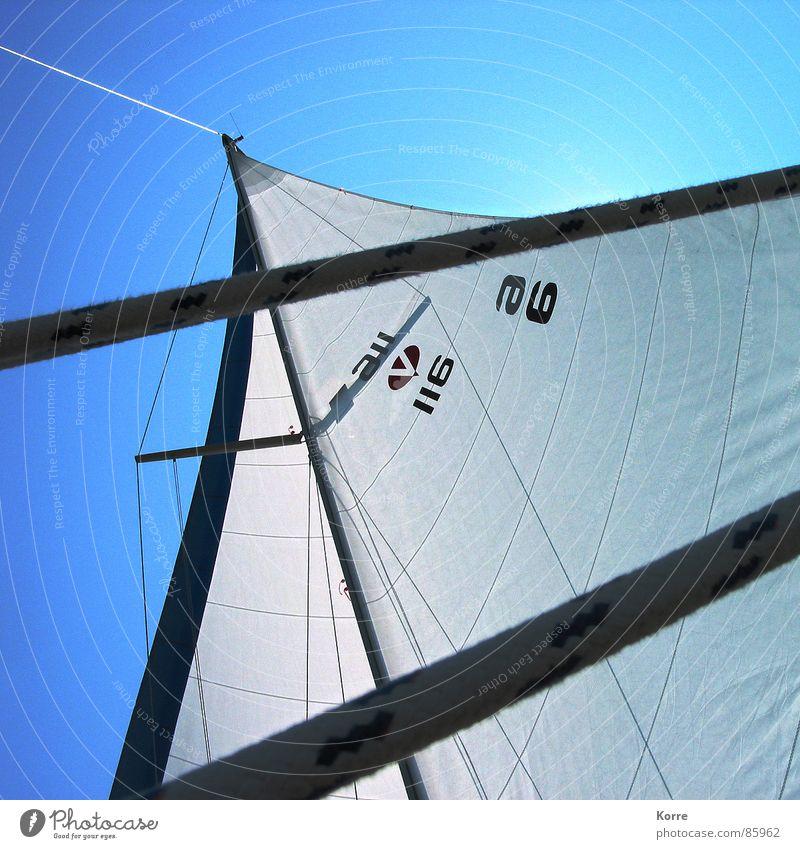 Sommer auf dem See Farbfoto Außenaufnahme Menschenleer Tag Schatten Kontrast Sonnenlicht Gegenlicht Froschperspektive Spielen Kreuzfahrt Meer Sport Segeln Seil