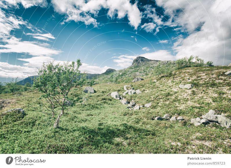 Lappland tundra Himmel Natur Ferien & Urlaub & Reisen Pflanze Sommer Sonne Landschaft Wolken Ferne Berge u. Gebirge Umwelt Freiheit Felsen Zufriedenheit Wetter