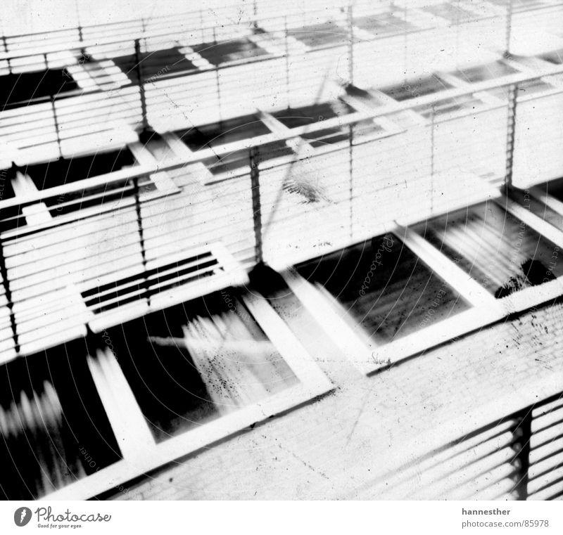 die fenster zum hof Haus Fenster Architektur Glas hoch Hochhaus Schulgebäude trashig Fensterscheibe Schulunterricht Schule Fensterbrett Ladengeschäft Kaufhaus