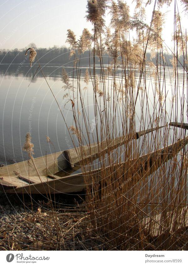 Überflutet Wasser See Wasserfahrzeug Küste Schilfrohr fluten