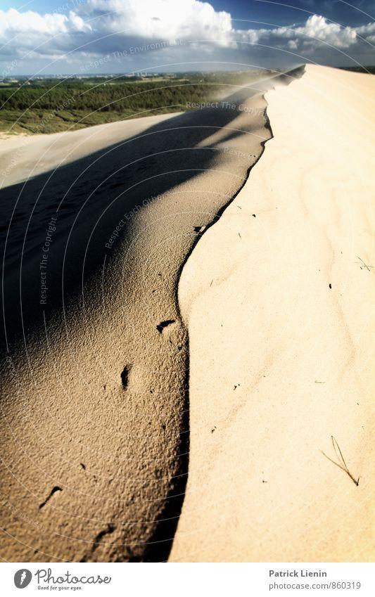 Day in the Dunes VII Himmel Natur Ferien & Urlaub & Reisen Pflanze Erholung Landschaft ruhig Ferne Umwelt Wärme Leben Freiheit Sand Stimmung Erde Zufriedenheit