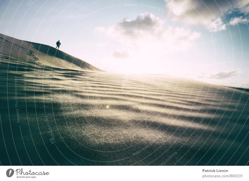 Day in the Dunes II Wohlgefühl Zufriedenheit Sinnesorgane Erholung ruhig Meditation Ferien & Urlaub & Reisen Tourismus Ausflug Abenteuer Ferne Freiheit