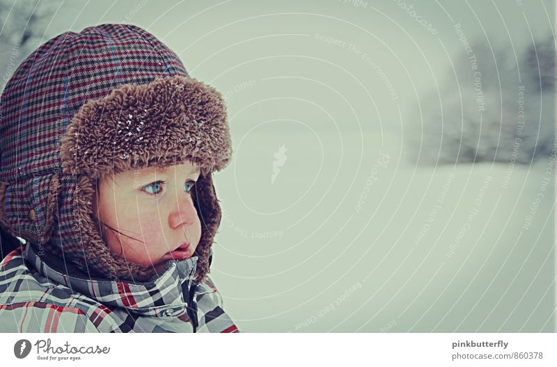 kleiner Schneebär Kleinkind Junge Kindheit Kopf Gesicht Auge Nase 1 Mensch 1-3 Jahre Natur Landschaft Winter Baum Park Schneeanzug Mütze beobachten träumen kalt