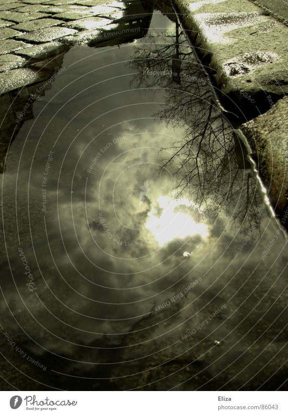 Irgendwo am Straßenrand Pfütze Regen Kopfsteinpflaster Himmel Reflexion & Spiegelung Wolken Wetter grün-gelb holperig Haus Wasser Regenwasser Stein nass Sonne